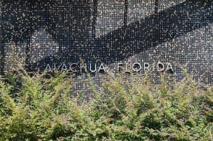 Alachua Mosaic